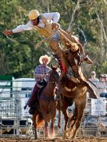 Riding Lesson No. 1 by FireflyPhotosAust