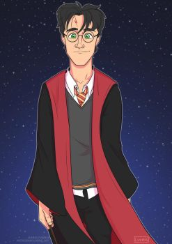 Happy 20th Anniversary, Harry Potter! by Luxris