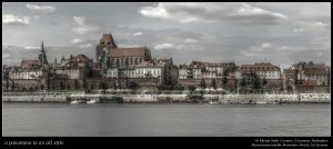 a panorama in an old style by msulik