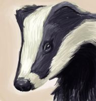 Badger by T-Rissy