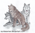 Wolf Trio by SunlessRise