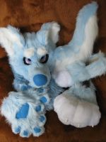 ~Blizzard~ full partial by HoneyspydeR