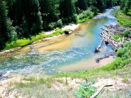 Pine River 3 by Xandriagibson