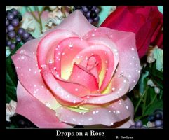 Drops on a Rose II by Rae-Lynn