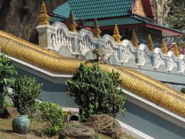 Thailand 41 by Afrolovertje
