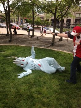 I caught a machop by titanstargirl