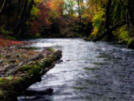 Oregon creek by Alegion-stock