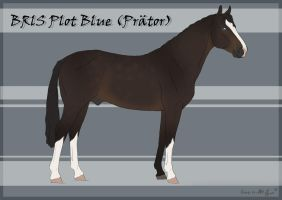 BRlS Plot Blue ID44 by BRls-love-is-MY-Live