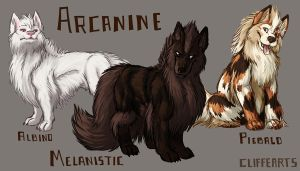 Arcanine Variants by CliffeArts