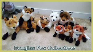 Douglas Fox Collection! by Vesperwolfy87