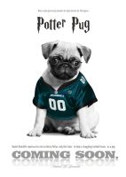 Potter Pug by JohnnyMex