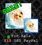 DISCOUNTED - $8 USD - Surf's Up! by PointyHat