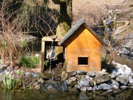 Little Pond Cabin 02 by Lengels-Stock