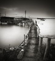 Fisherman's Wharf2 by dfm63
