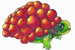 water colour grape turtle by missiefish