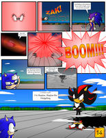 Sonic the Hedgehog Z #3 Pg. 14 July 2013 by CCI545