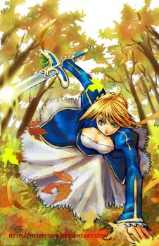 Saber Fate stay night by meomeoow