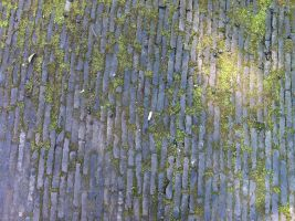 Mossy Chinese floor tile 1 by Greyfaerie4