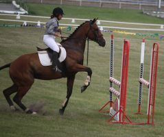 STOCK Showjumping 475 by aussiegal7