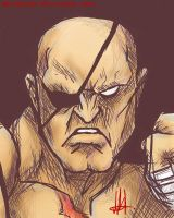 Sagat by wolfsouled