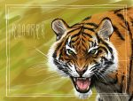Tiger by Entropician