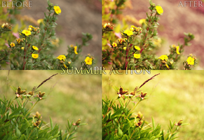 Summer photoshop action by nomatterwhy