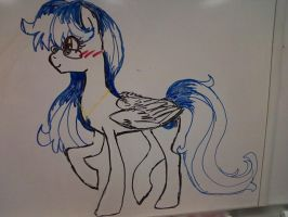Wipeboard MoonFeather by FountainStranger