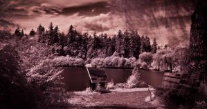 Lost Lagoon by hlaurah