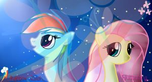 Rainbow Dash and Fluttershy by MarshmallowWithChoco