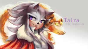 Taira The Hedgehog by FairyGB