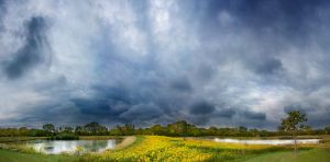 two ponds... by hexagonian