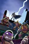 Batman/TMNT Adventures #1 Variant Cover by TonyFleecs