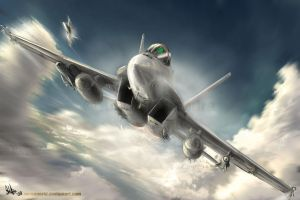 Super Hornet by MeganeRid