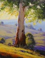 Summer Morning Australia by artsaus