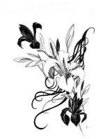 Black and white lilies by LisaLins