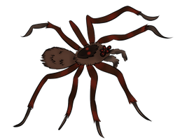 Fish Spider (Insane Spiders logo) by Sohiee