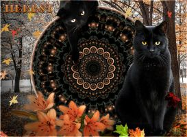 Autumn: A tale of two kitties by ScraNo