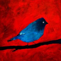 Blue Bird Red Box by Duffzilla
