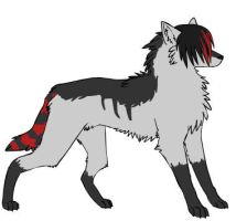 The Wolf by DancinDog