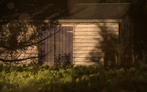 The Shack in the Woods by florianteodorescu