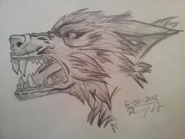 Angry Wolf by dailybunny