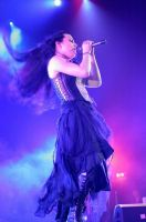 The Extraordinary Amy Lee by Hernandez-Henson