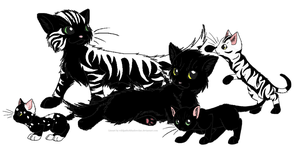 Soot, White and Kits by Cyinamas
