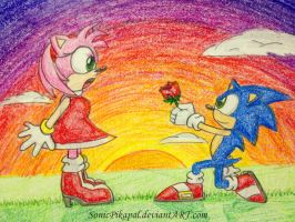 Sonic and Amy at sunset by SonicPikapal