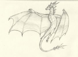 Wyvern Sketch by MuniaElena