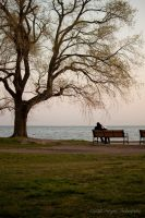 Love Under the Tree by patganz