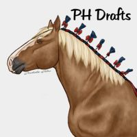 Showmanship Draft Finished by BreakableHorseRider