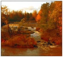Fall colours III by ximocampo
