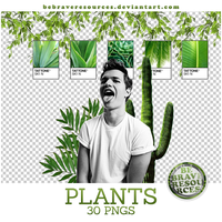 Plants pngs by BeBraveResources