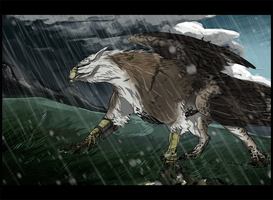 S--Drust-Young Gryphon-2 by ObloquyCondemed